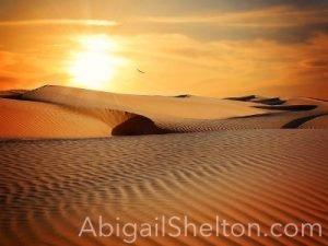 Abigail Shelton-Desolate Land