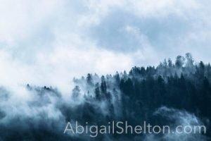 ADVENTURE| Mysterious Cello Piece - Abigail Shelton