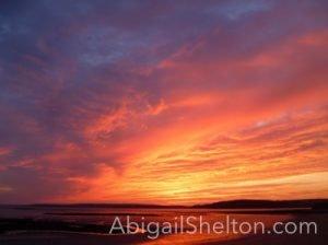 ROMANCE | Romantic Flight - Abigail Shelton