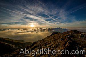 ADVENTURE | Tragic Fall - Abigail Shelton